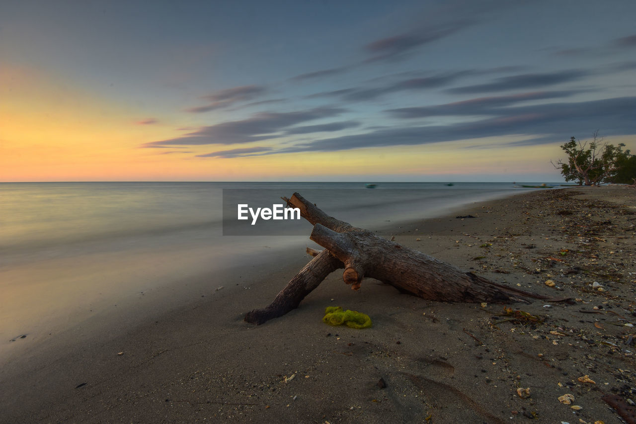 sky, beach, sea, land, sunset, water, beauty in nature, horizon, horizon over water, scenics - nature, nature, tranquility, tranquil scene, sand, cloud - sky, no people, driftwood, orange color, non-urban scene, outdoors, wood