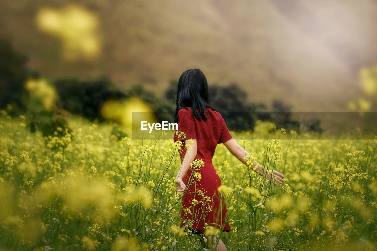 Rear view of woman wearing red dress while standing amidst yellow flowering plants
