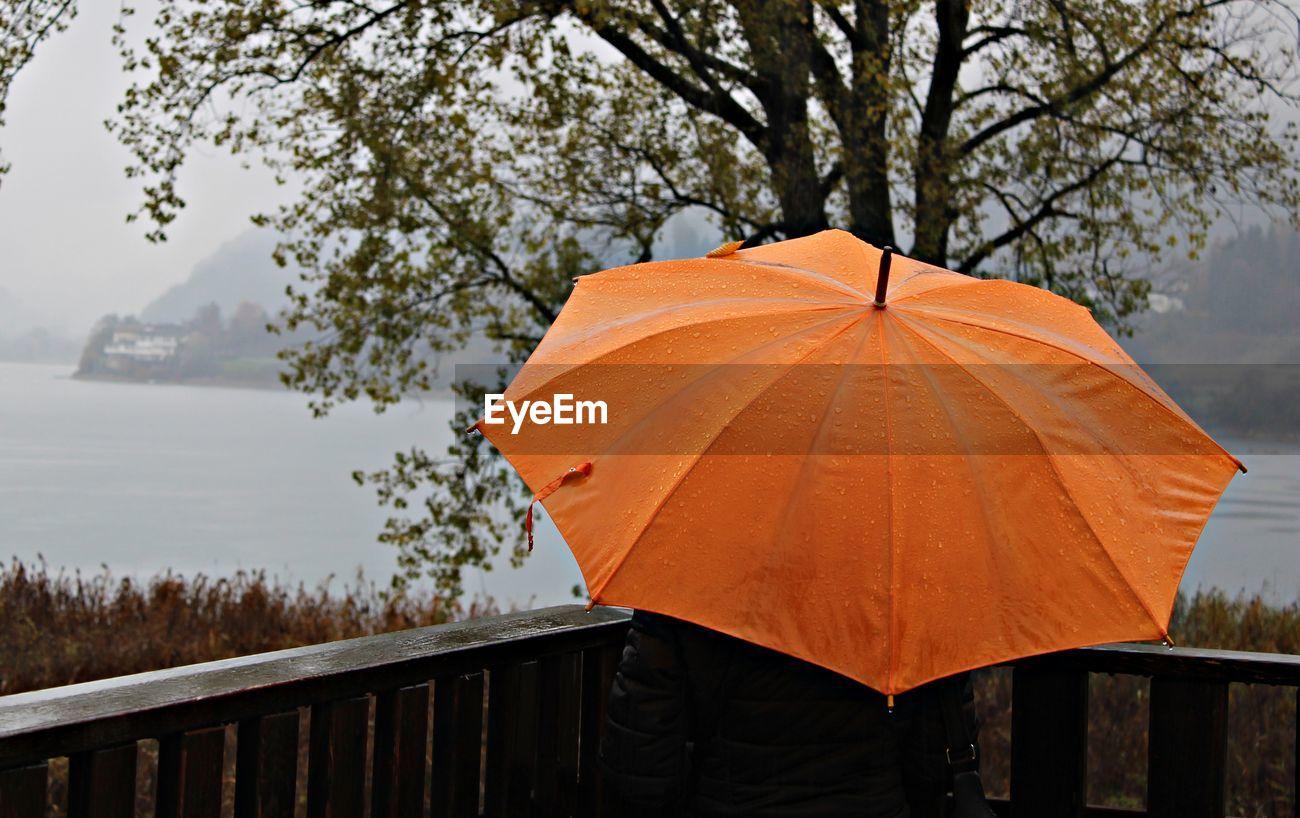 Rear View Of Person Holding Orange Umbrella Id 117867026