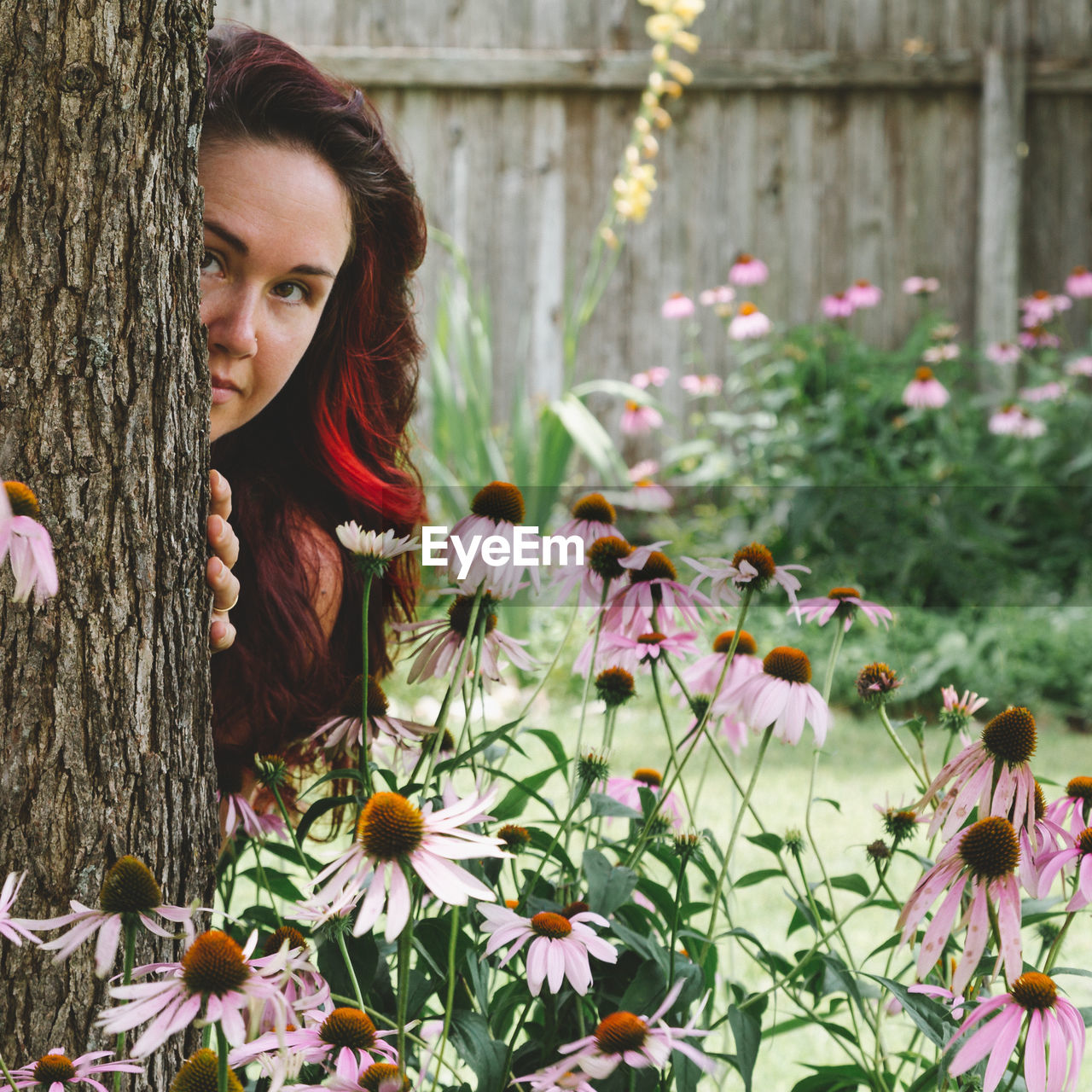 Portrait of young woman standing behind tree trunk in park