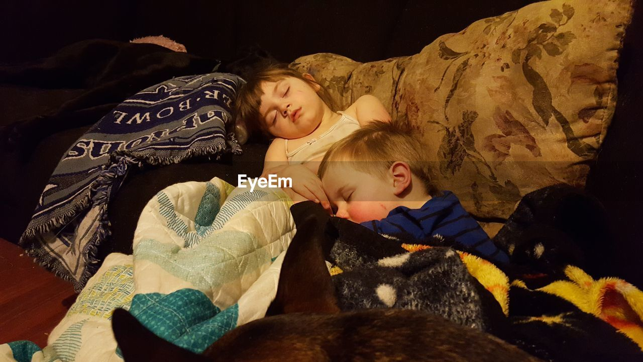 childhood, real people, leisure activity, togetherness, indoors, girls, young women, bed, lying down, lifestyles, elementary age, young adult, family, boys, animal themes, relaxation, sibling, cute, bonding, home interior, two people, mammal, teddy bear, blond hair, stuffed toy, bedroom, domestic animals, day, people