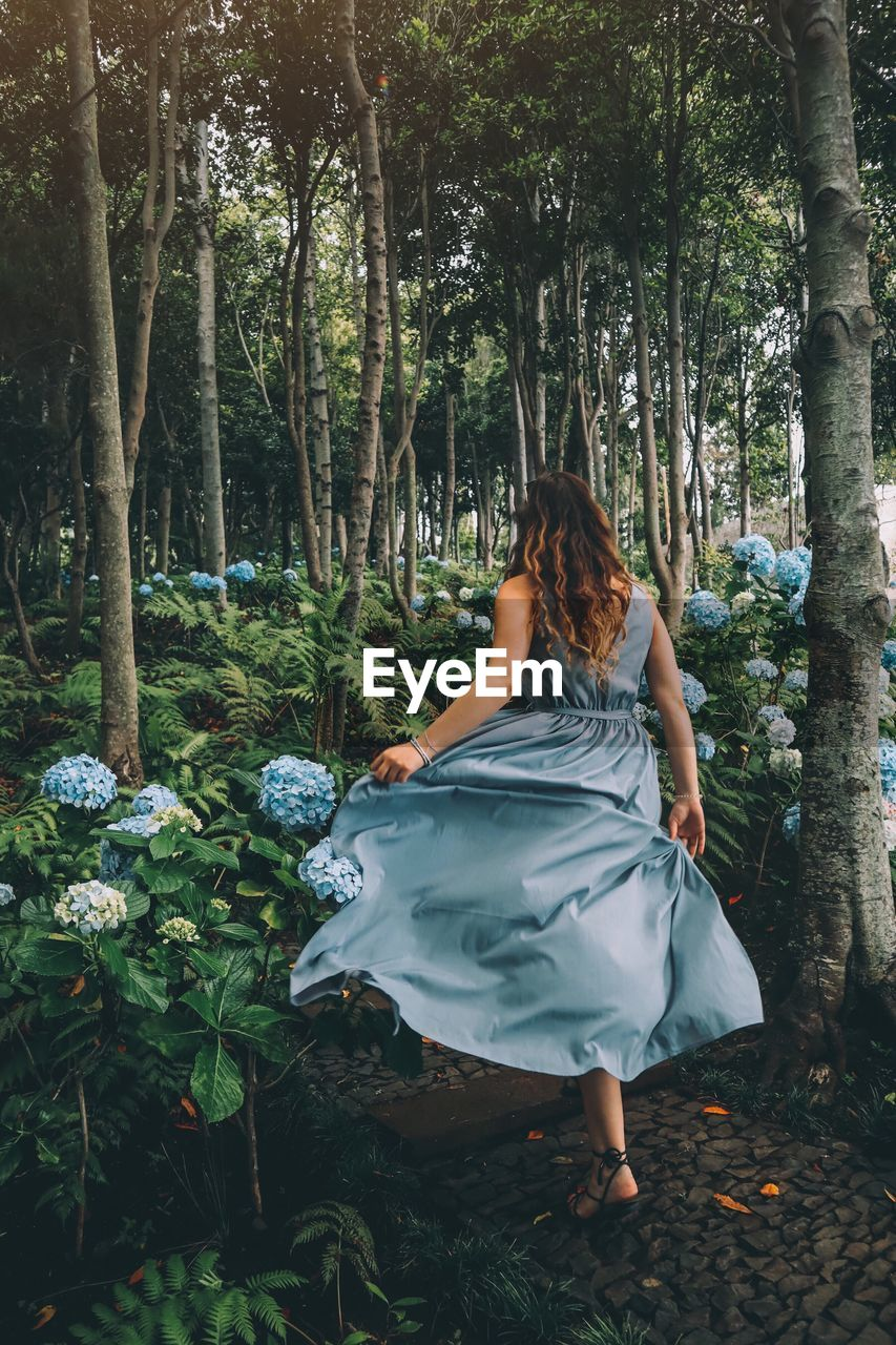 Rear view of woman by plants and trees in forest