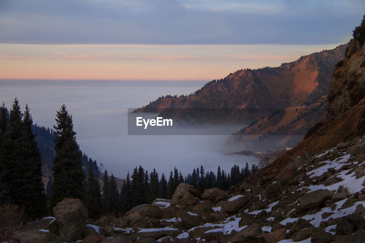 Top view of a mountain gorge in the clouds at sunset with stones and spruce forest