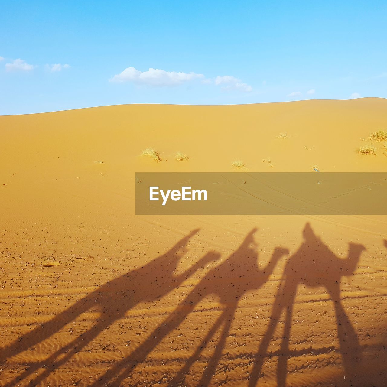 Shadow Of People On Sand Dune In Desert Against Sky