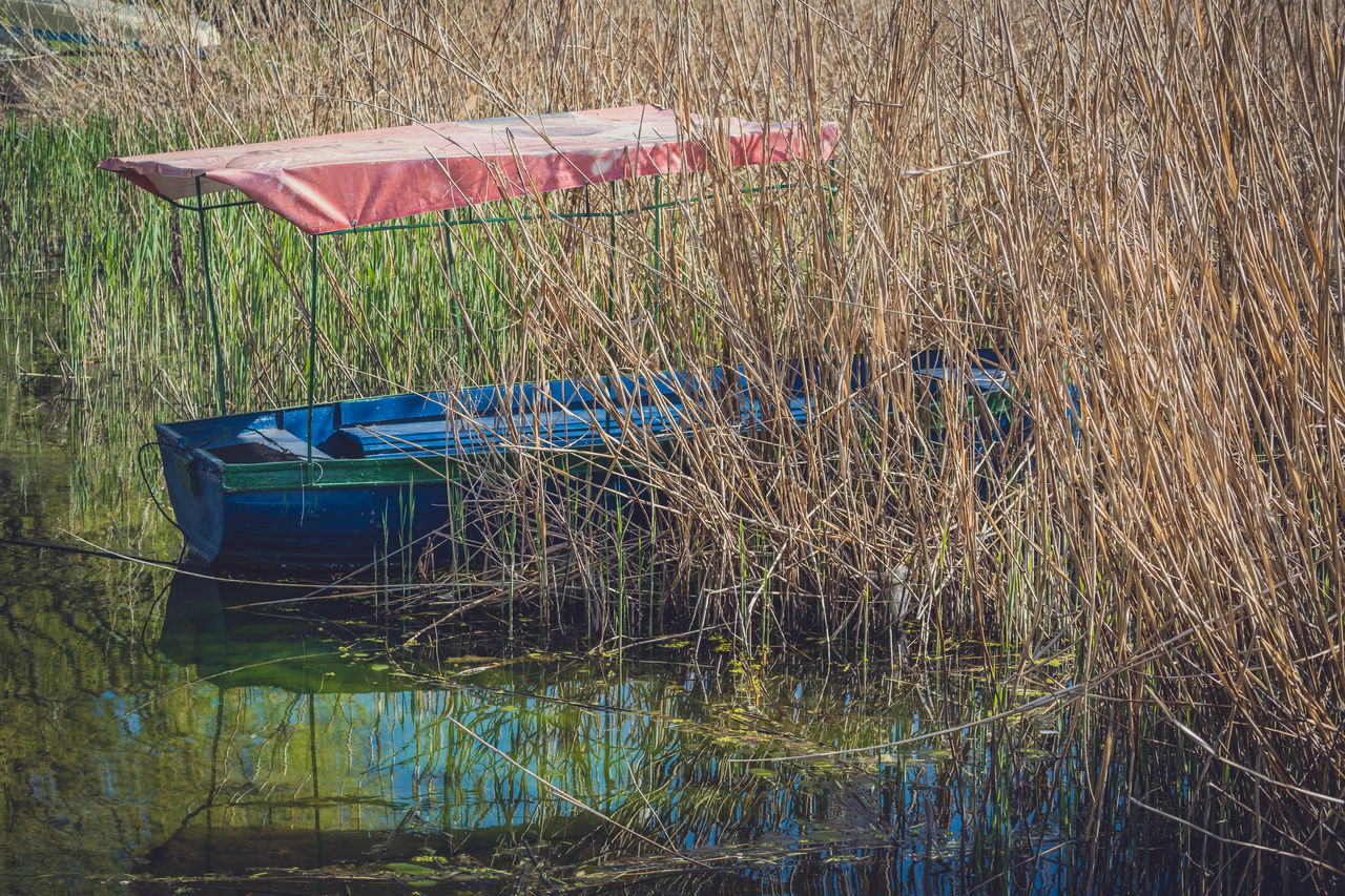 water, nautical vessel, plant, grass, nature, transportation, reflection, day, mode of transportation, no people, growth, lake, moored, land, tranquility, outdoors, waterfront, beauty in nature, blue, rowboat