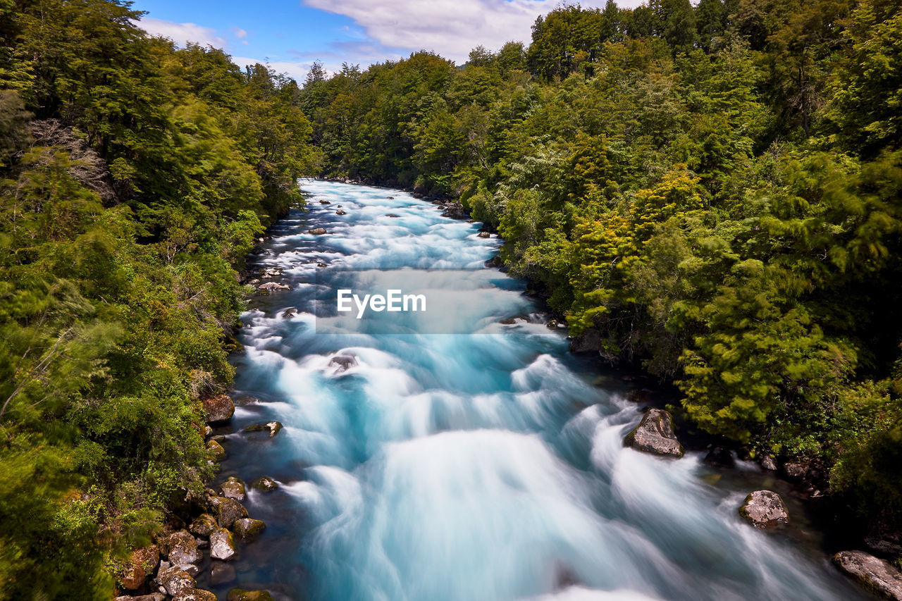tree, plant, scenics - nature, beauty in nature, water, motion, long exposure, flowing water, waterfall, blurred motion, nature, flowing, forest, growth, no people, green color, day, non-urban scene, sky, outdoors, stream - flowing water, power in nature