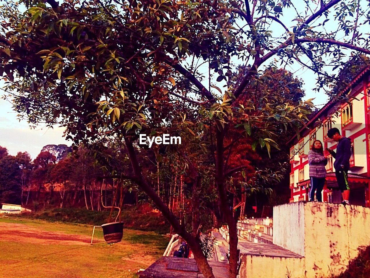 tree, real people, outdoors, day, built structure, building exterior, men, architecture, growth, nature, branch, sky, people