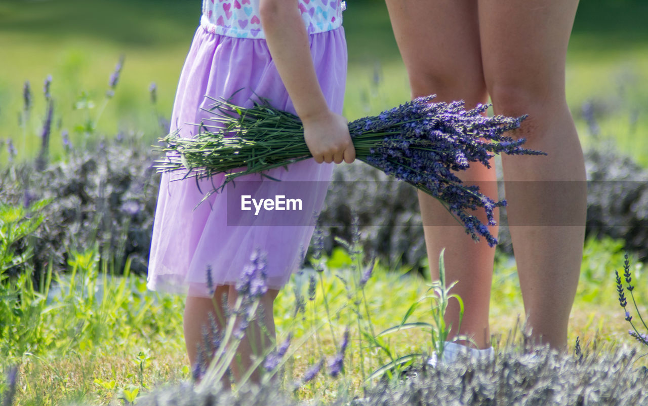 Young girl with a fist full of lavender, stands next to her mom