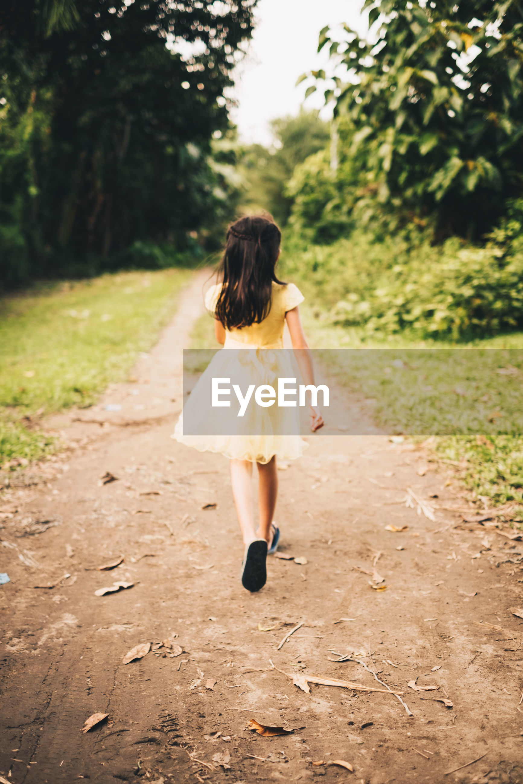 Rear view of girl walking on road amidst trees