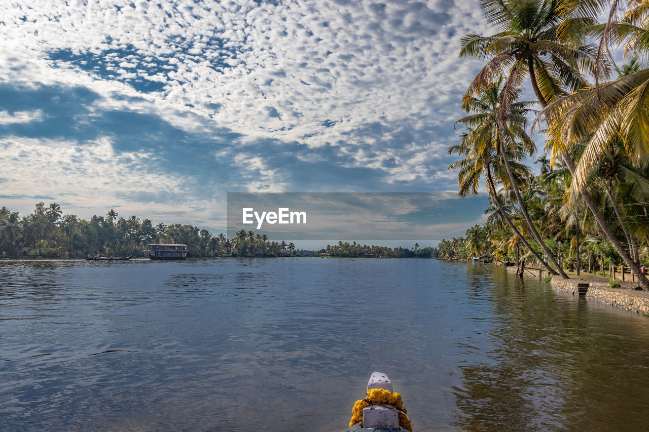 tree, water, cloud - sky, plant, sky, nature, palm tree, tropical climate, day, beauty in nature, scenics - nature, tranquility, tranquil scene, real people, one person, outdoors, human body part, body part, human leg