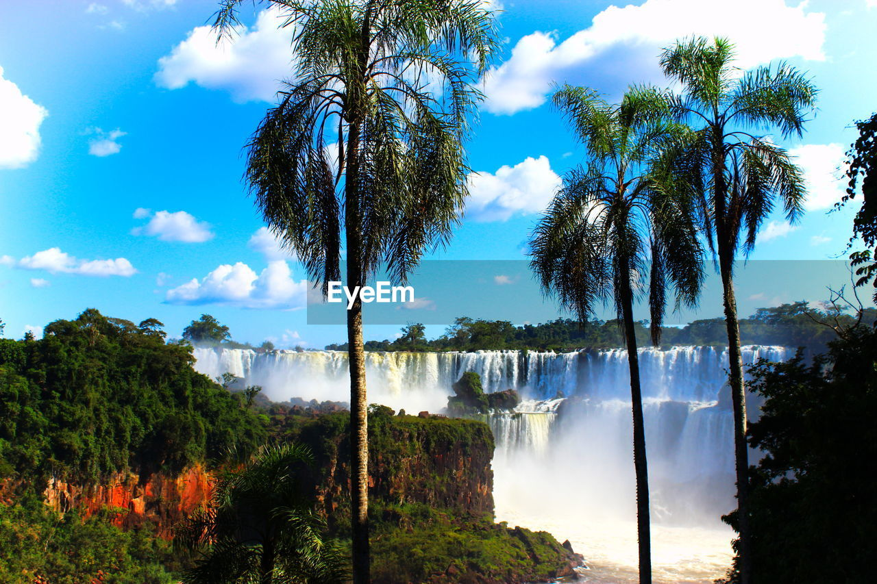 Palm Trees At Iguazu Falls Against Sky