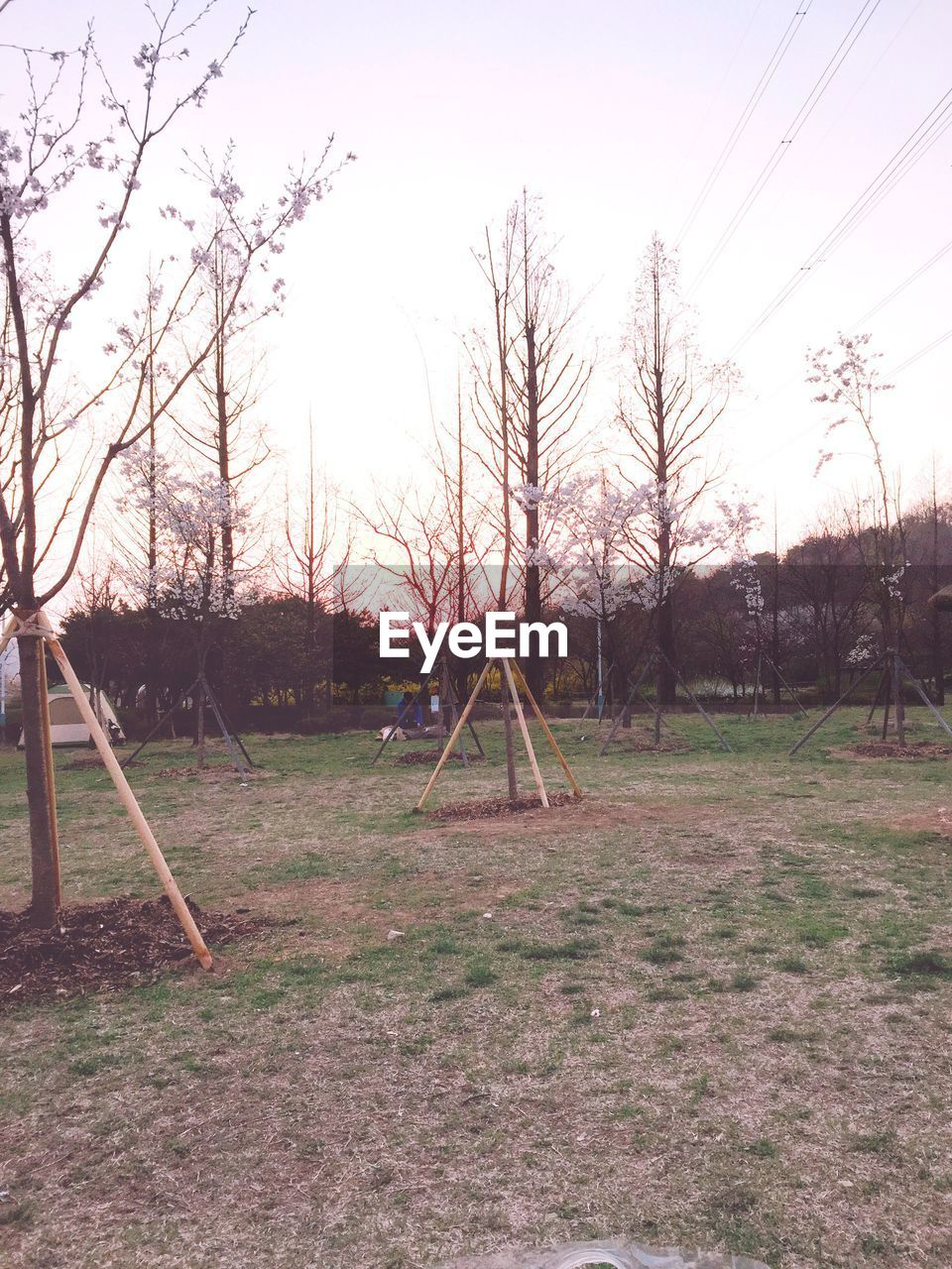 playground, outdoor play equipment, tree, swing, no people, park - man made space, childhood, field, landscape, tranquility, jungle gym, grass, sky, outdoors, nature, beauty in nature, scenics, day, bare tree, goal post