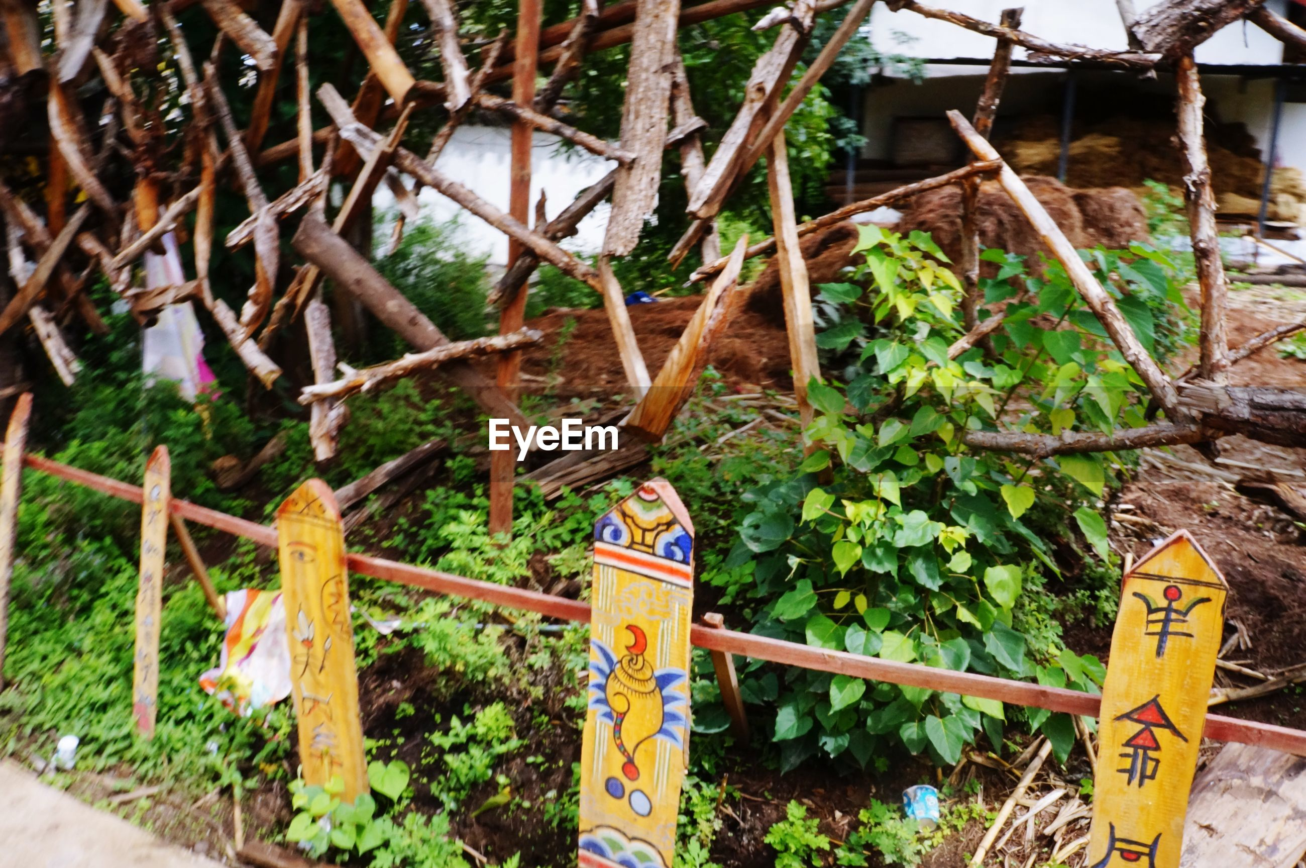 metal, rusty, wood - material, text, fence, railing, safety, built structure, tree, protection, day, metallic, abandoned, plant, old, outdoors, security, obsolete, no people, communication