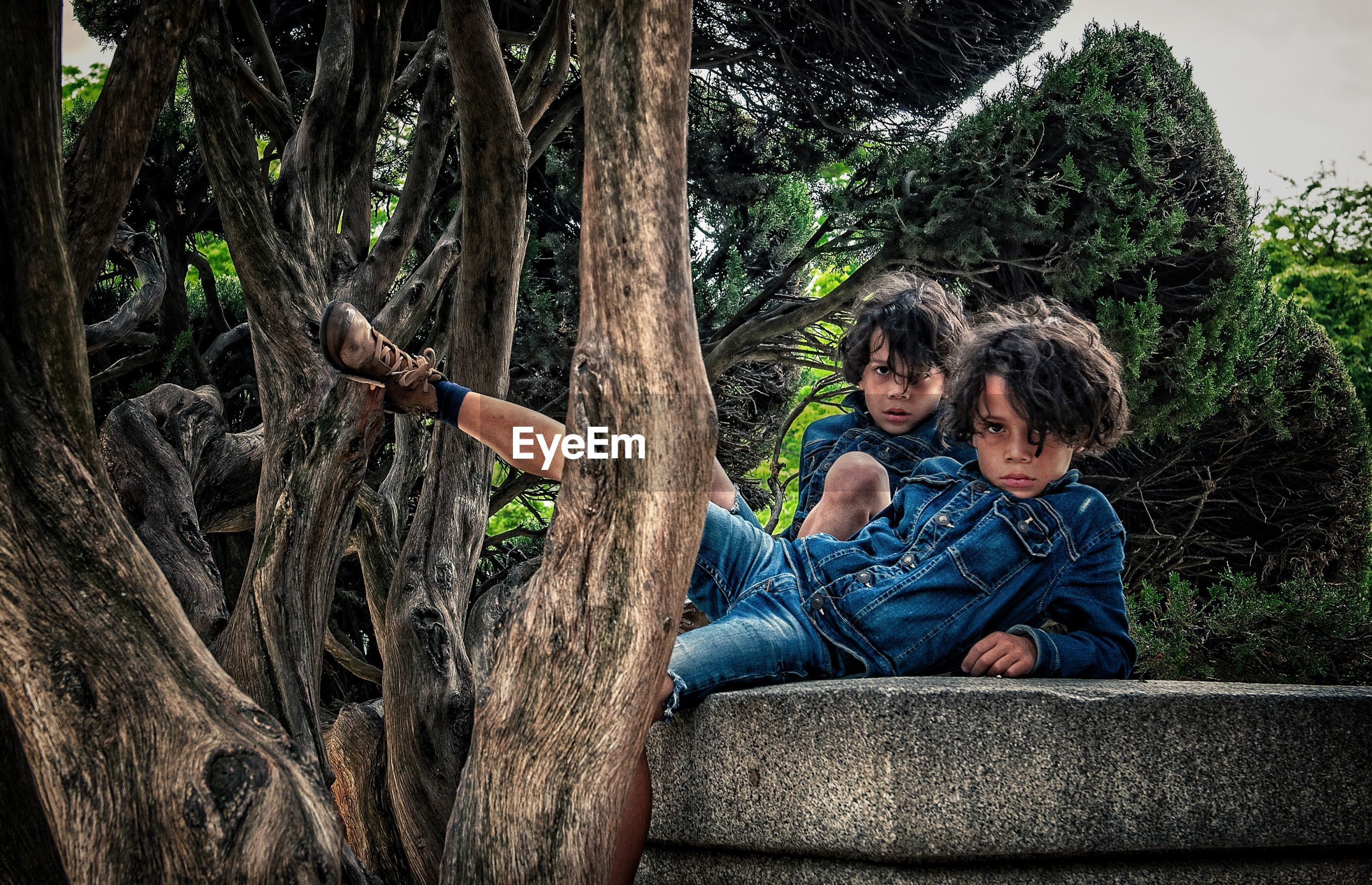 Portrait of siblings by tree trunk in forest