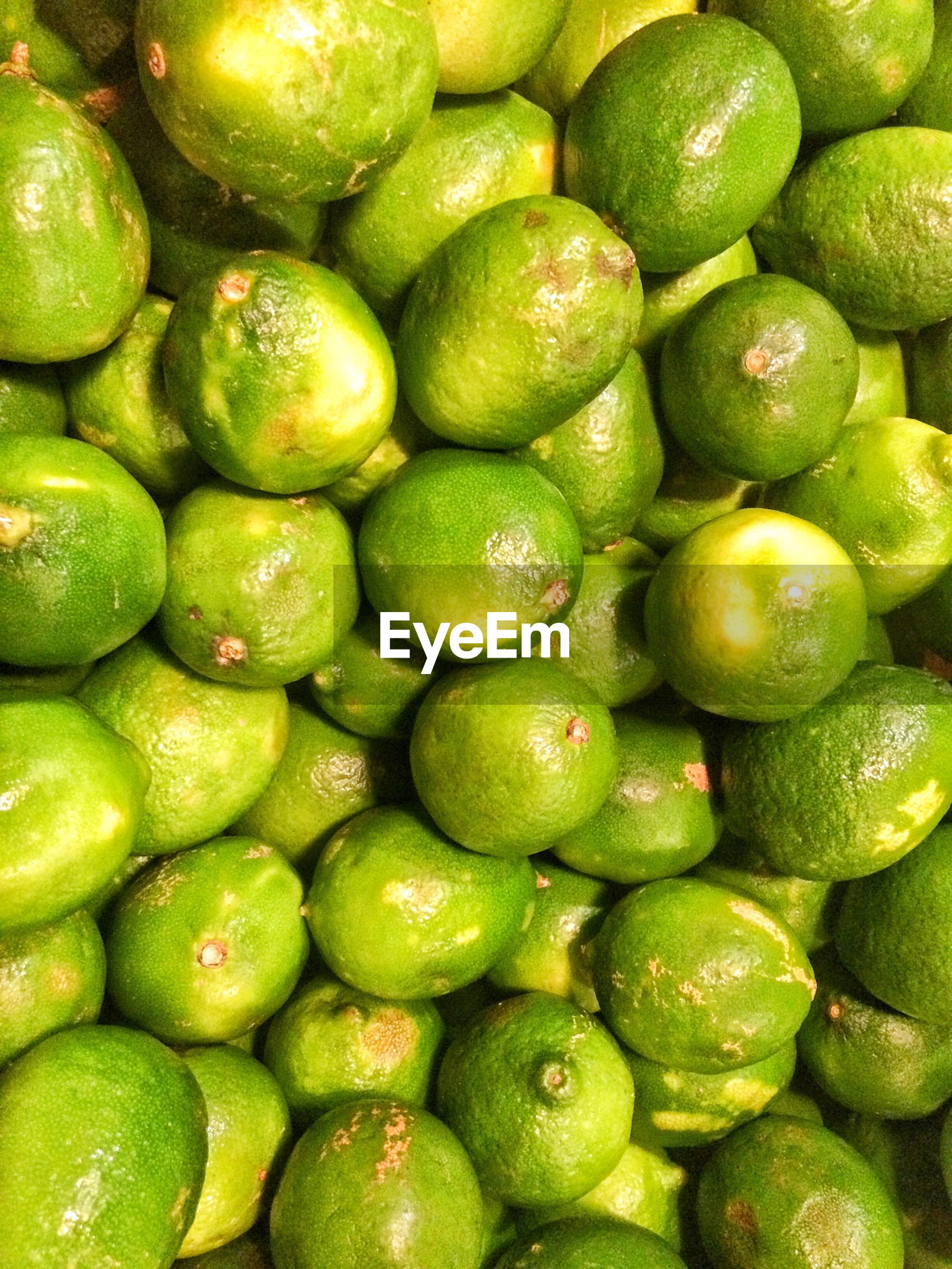 FULL FRAME SHOT OF GREEN FRUITS