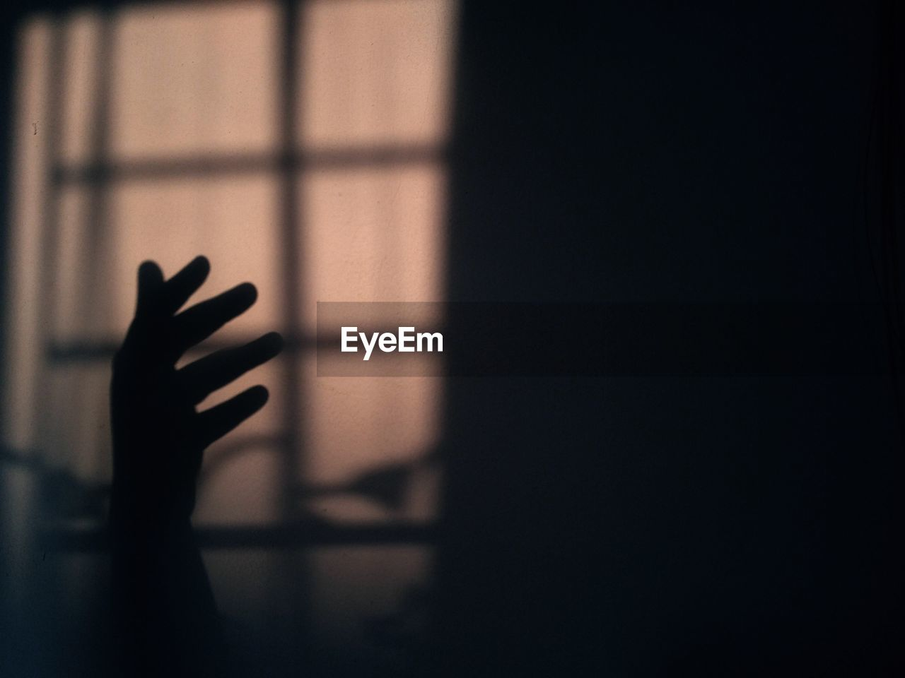 Silhouette Hand In Darkroom