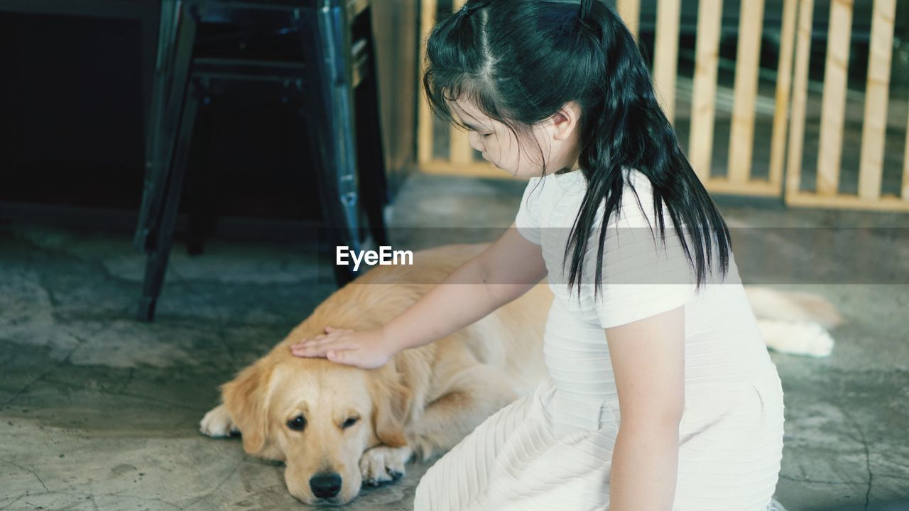 Side View Of Girl Petting Retriever Dog While Kneeling On Floor
