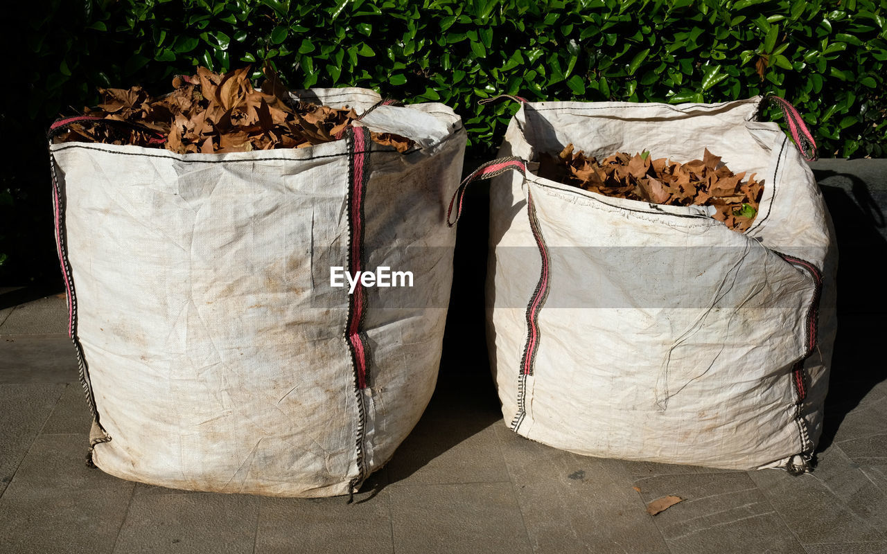 sack, no people, bag, leaf, day, nature, plant part, plant, outdoors, textile, paper bag, white color, container, hanging, paper, abundance, focus on foreground, dry, leaves, close-up, plastic bag