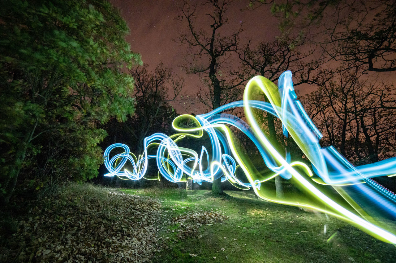 plant, tree, long exposure, illuminated, motion, night, nature, no people, multi colored, light trail, glowing, land, growth, light painting, creativity, green color, field, speed, light - natural phenomenon, grass