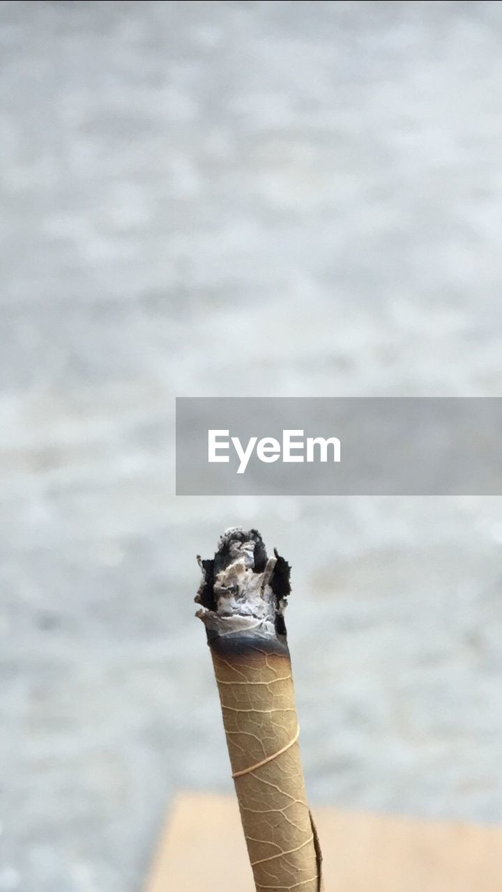 Close-Up Of Herbal Cigarette