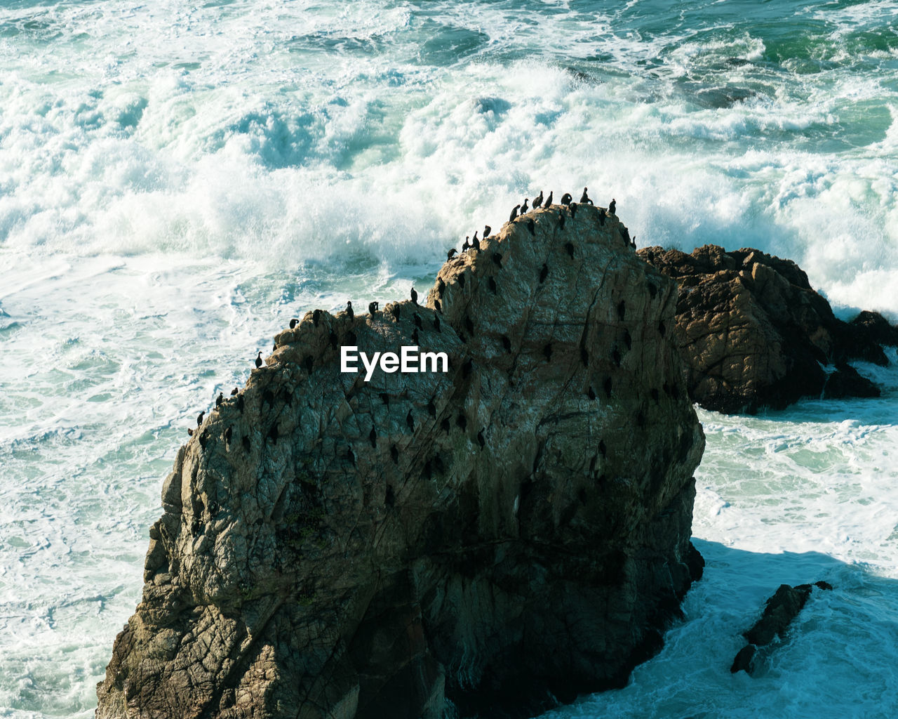 High angle view of birds perching over rock formation on sea