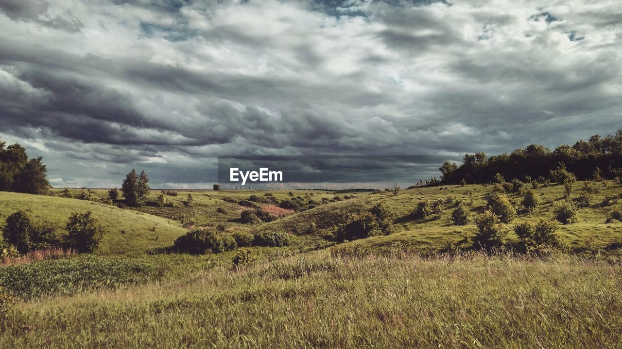 cloud - sky, environment, landscape, sky, plant, beauty in nature, tranquil scene, land, tranquility, scenics - nature, grass, field, nature, no people, overcast, tree, non-urban scene, growth, day, ominous