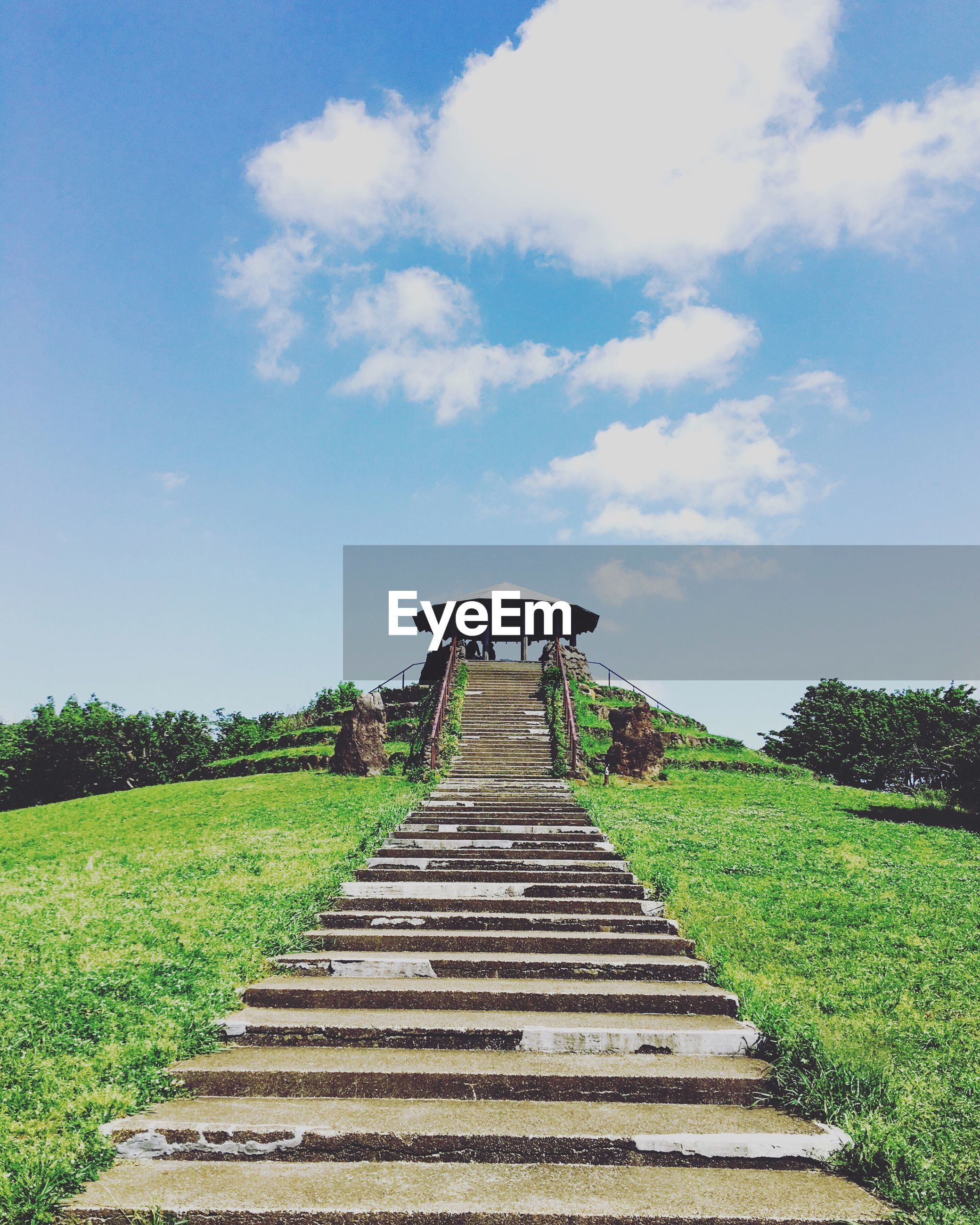 the way forward, steps, grass, sky, staircase, tree, tranquility, steps and staircases, built structure, plant, tranquil scene, field, growth, green color, nature, landscape, day, architecture, boardwalk, outdoors