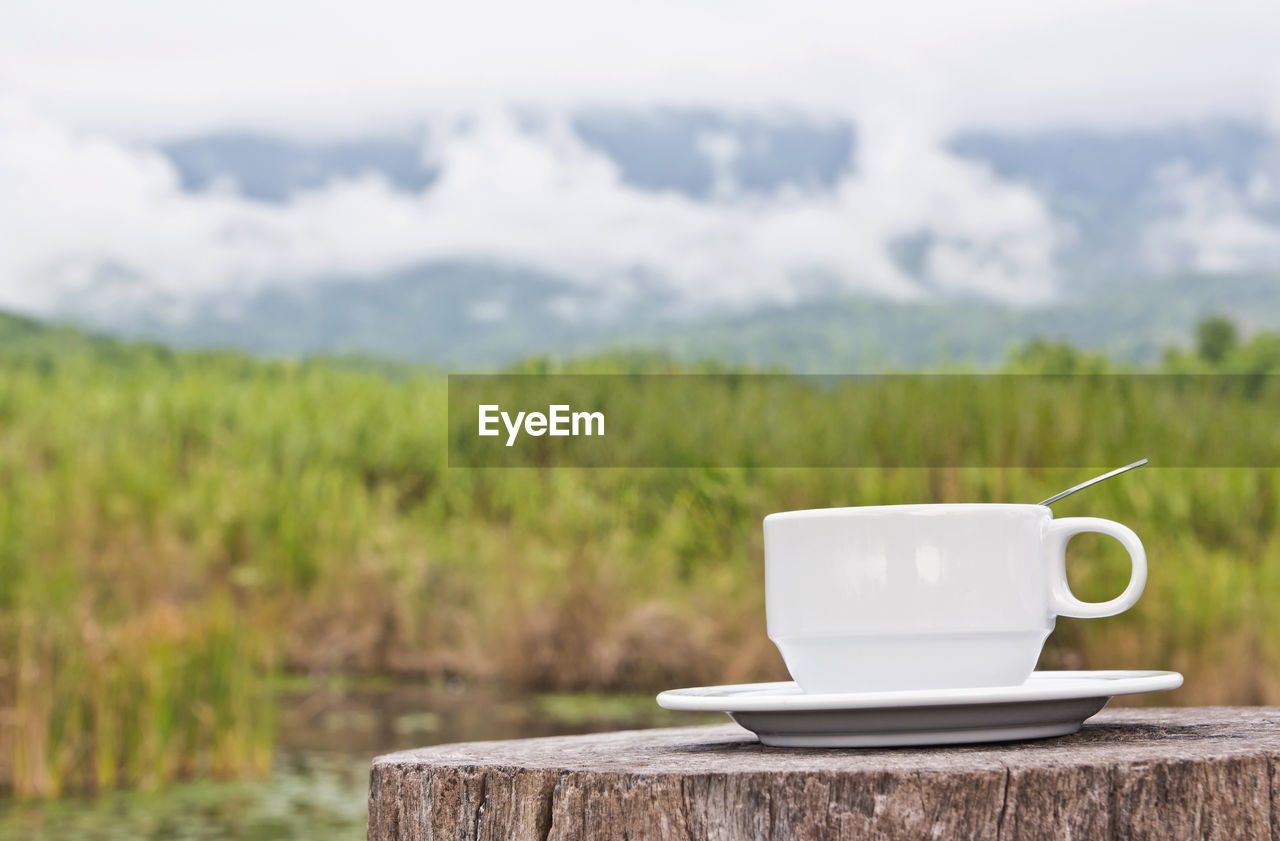 COFFEE CUP ON TABLE AGAINST PLANTS AND TEA
