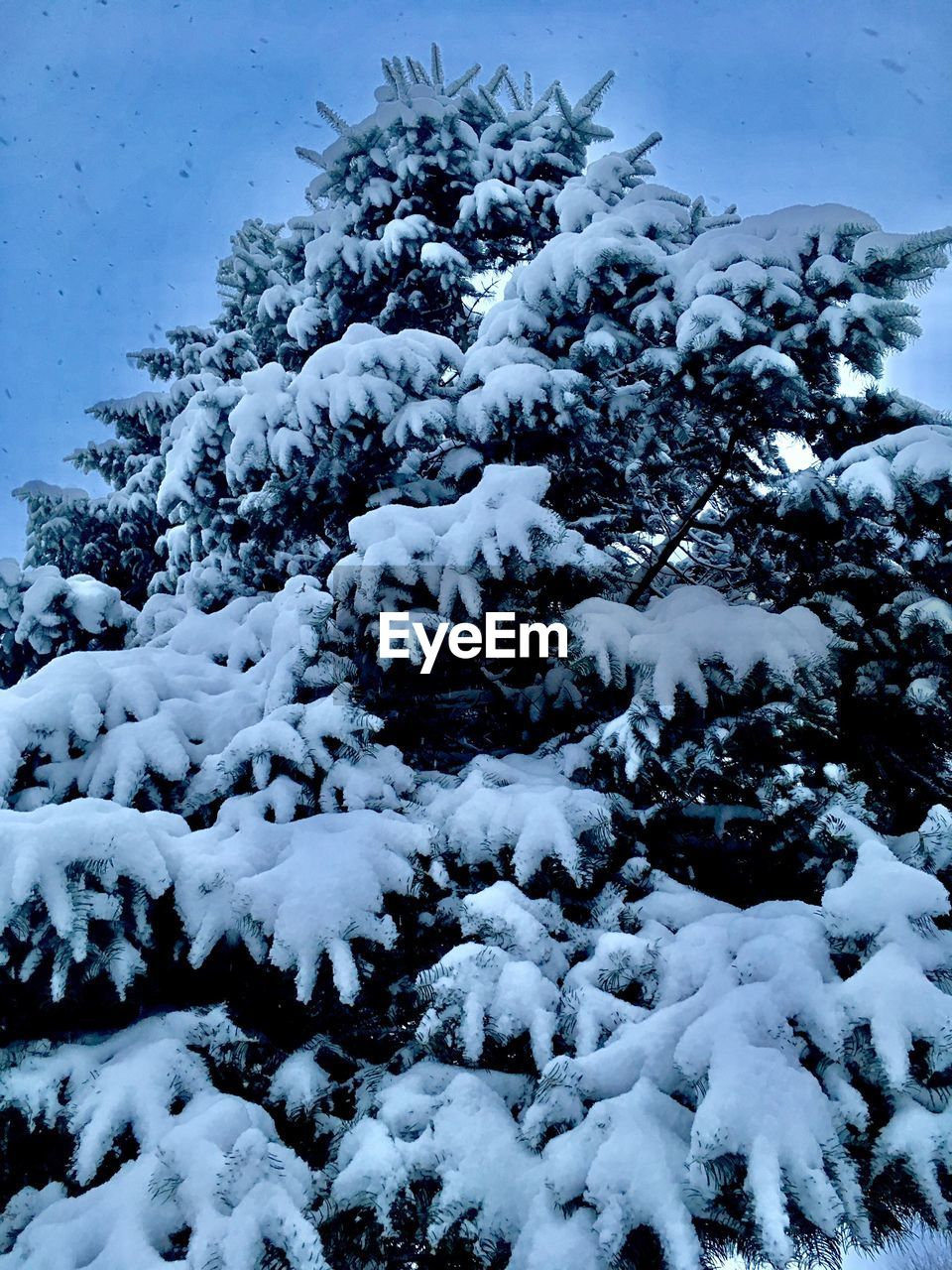 cold temperature, snow, nature, white color, beauty in nature, winter, no people, weather, scenics, tranquility, day, sky, tranquil scene, outdoors, water, blue, frozen, backgrounds, mountain, close-up, freshness