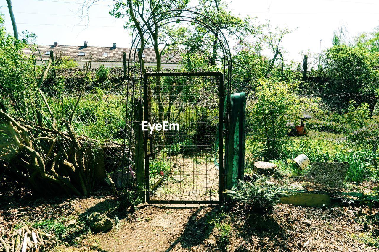 Closed gate of garden