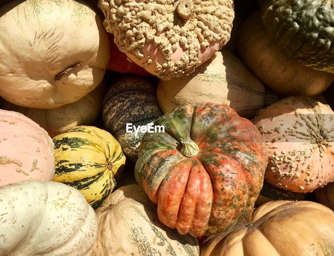 food and drink, food, healthy eating, freshness, wellbeing, still life, retail, backgrounds, no people, for sale, vegetable, market, choice, variation, full frame, pumpkin, close-up, large group of objects, market stall, indoors, ripe