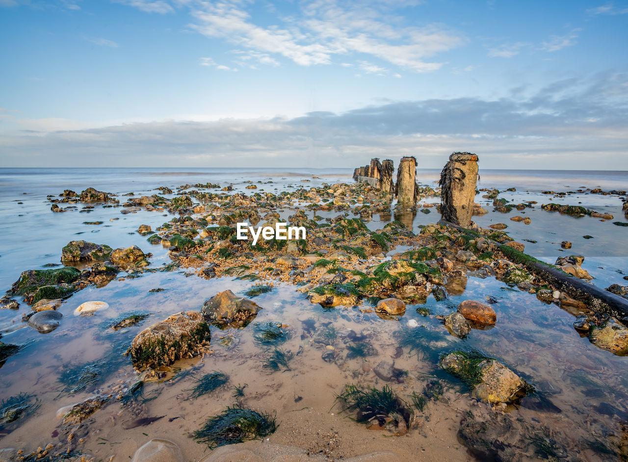 Seaweed covered rocks beside the wooden groyne on a sandy beach