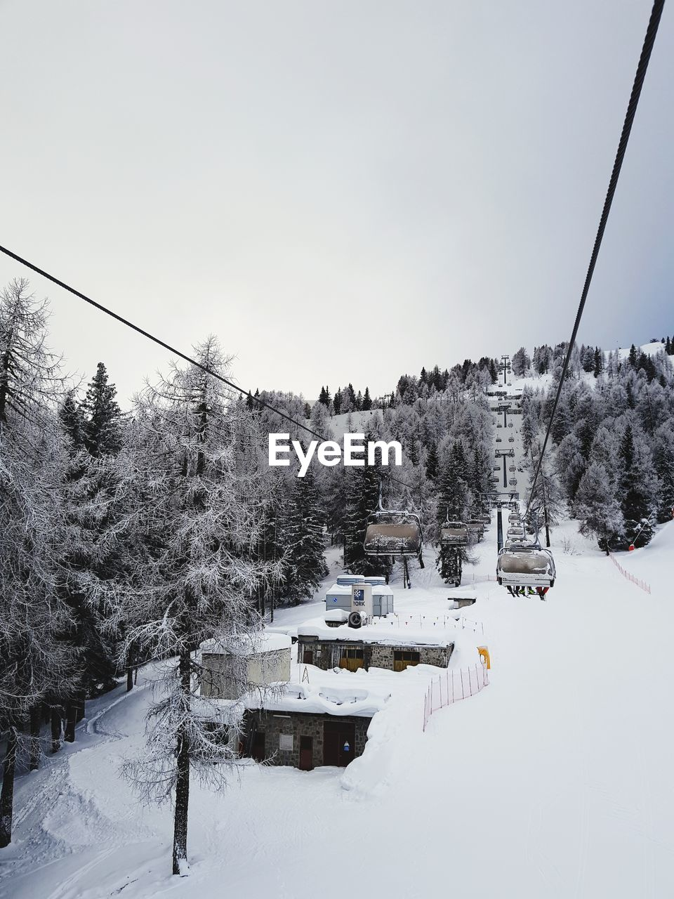 snow, cold temperature, winter, tree, sky, plant, cable, nature, covering, day, beauty in nature, cable car, no people, architecture, ski lift, transportation, scenics - nature, tranquility, mountain, outdoors, electricity