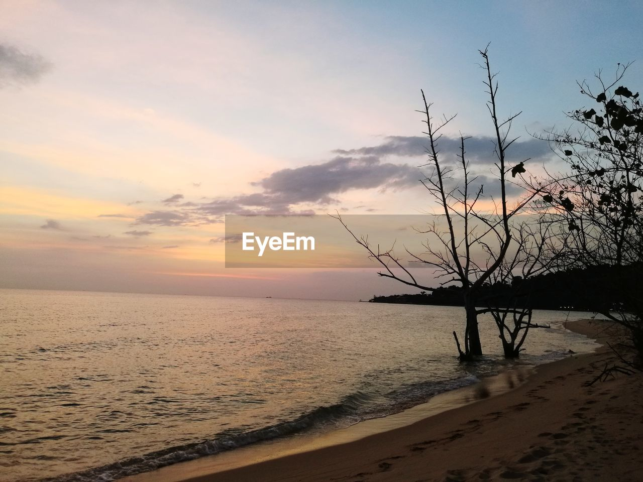 sky, sunset, water, beauty in nature, scenics - nature, tranquil scene, tranquility, cloud - sky, sea, land, beach, nature, horizon, horizon over water, no people, sand, idyllic, plant, tree, outdoors