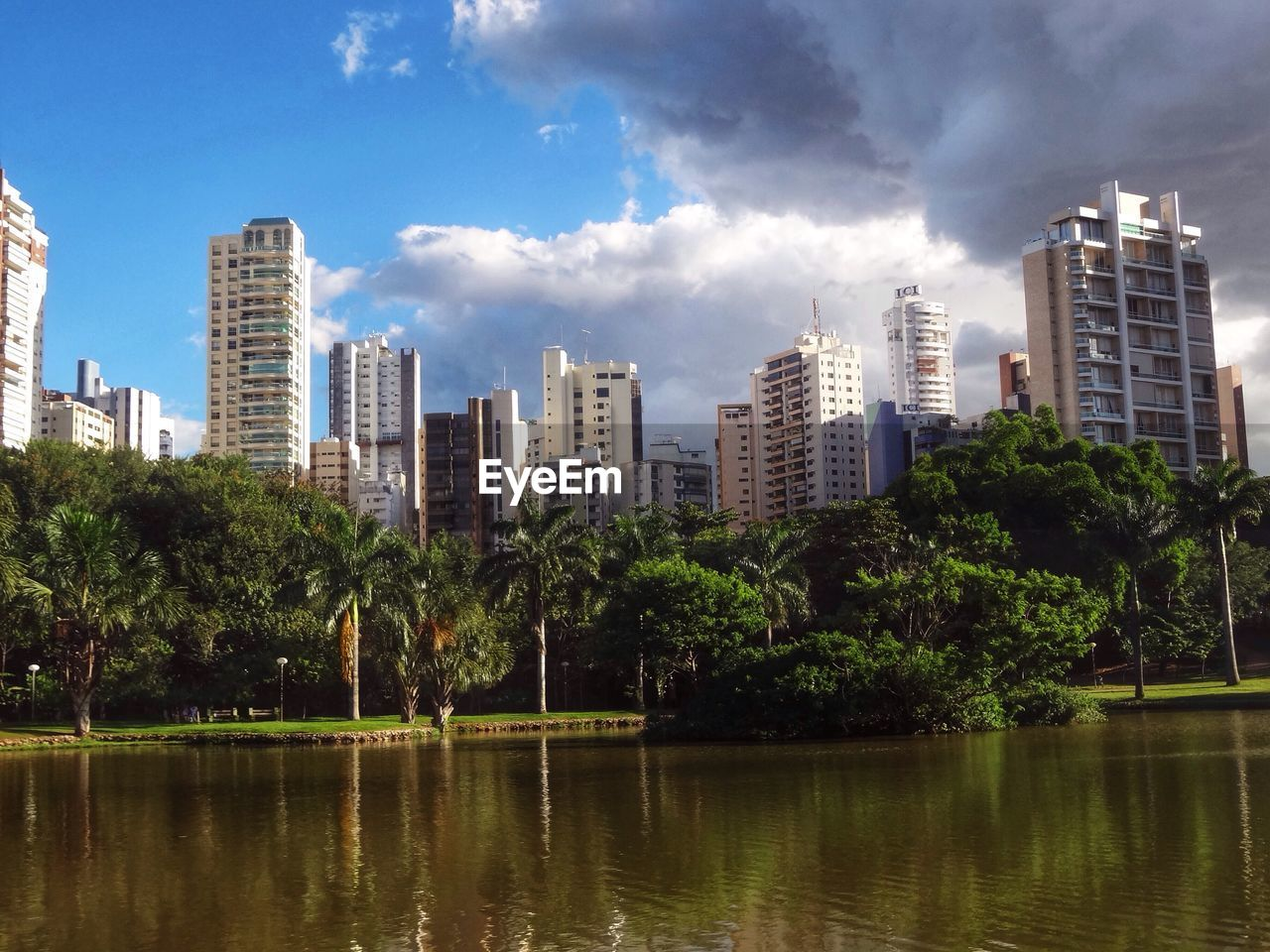 architecture, tree, skyscraper, city, building exterior, sky, modern, no people, water, outdoors, cityscape, day