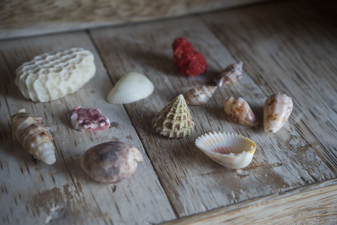 food, food and drink, still life, table, wood - material, freshness, wellbeing, healthy eating, indoors, no people, selective focus, close-up, high angle view, cutting board, fruit, nut - food, group of objects, nut, shell, indulgence, temptation