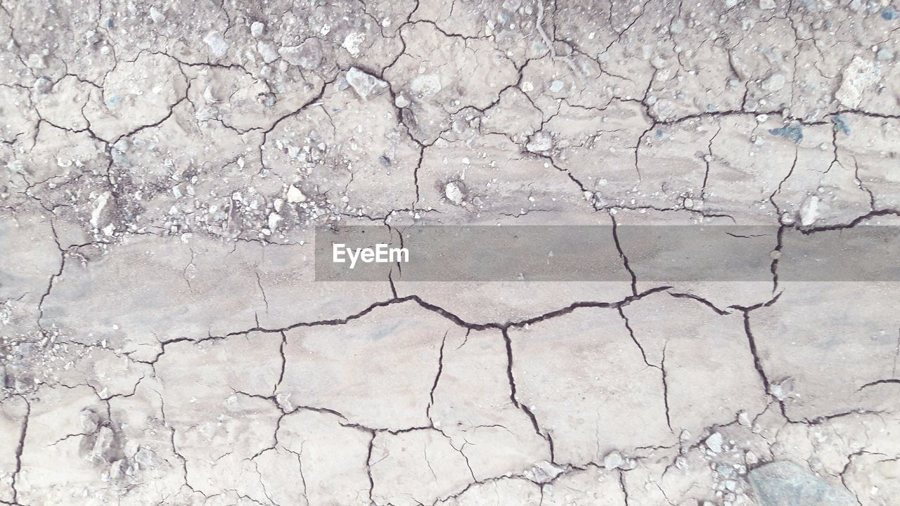 cracked, drought, arid climate, barren, extreme terrain, dry, land, backgrounds, landscape, nature, mud, day, textured, desert, global warming, no people, environmental issues, full frame, outdoors, physical geography, bare tree, beauty in nature, close-up, salt - mineral