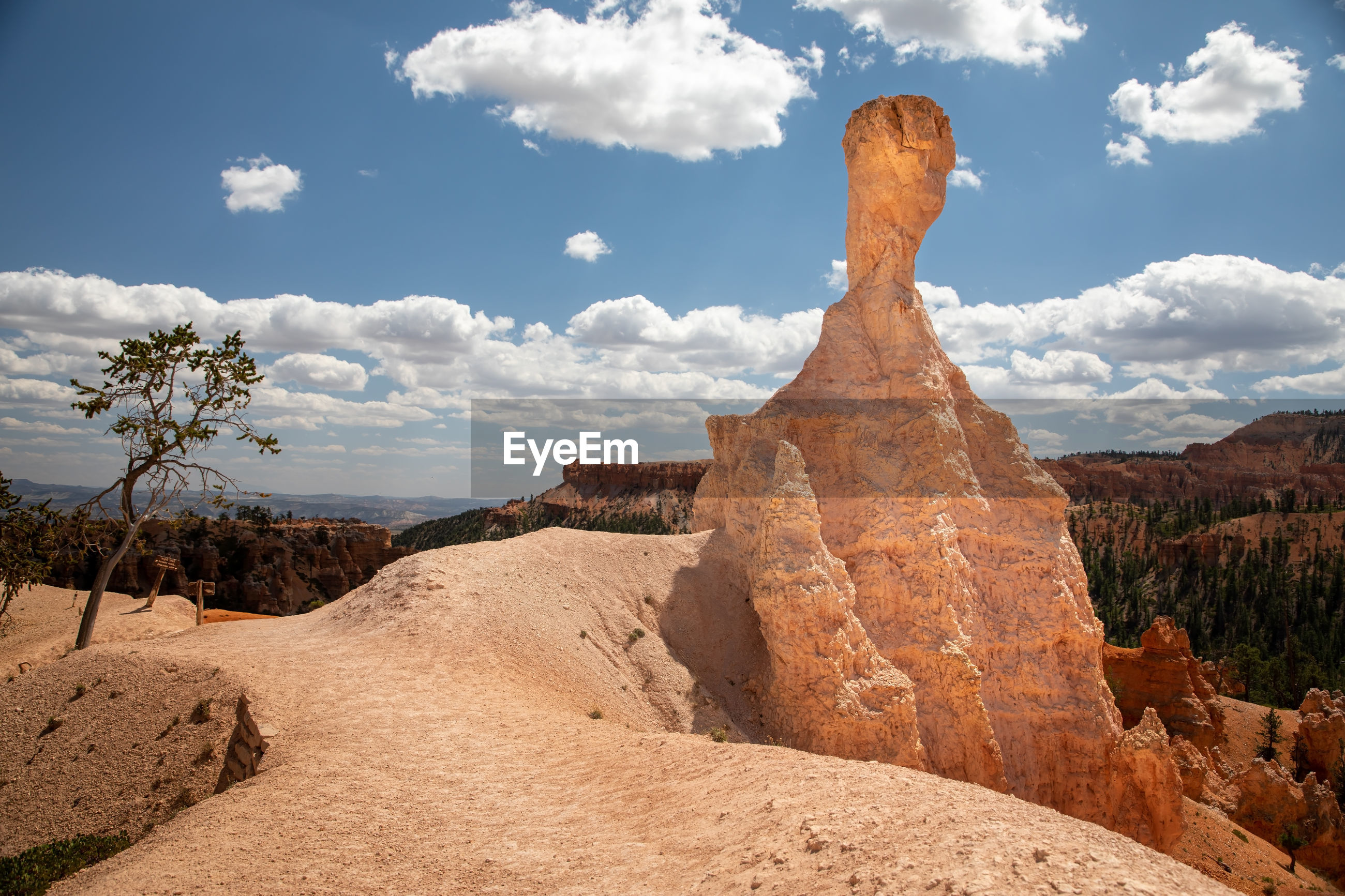 Hoodoo in the bryce canyon, utah
