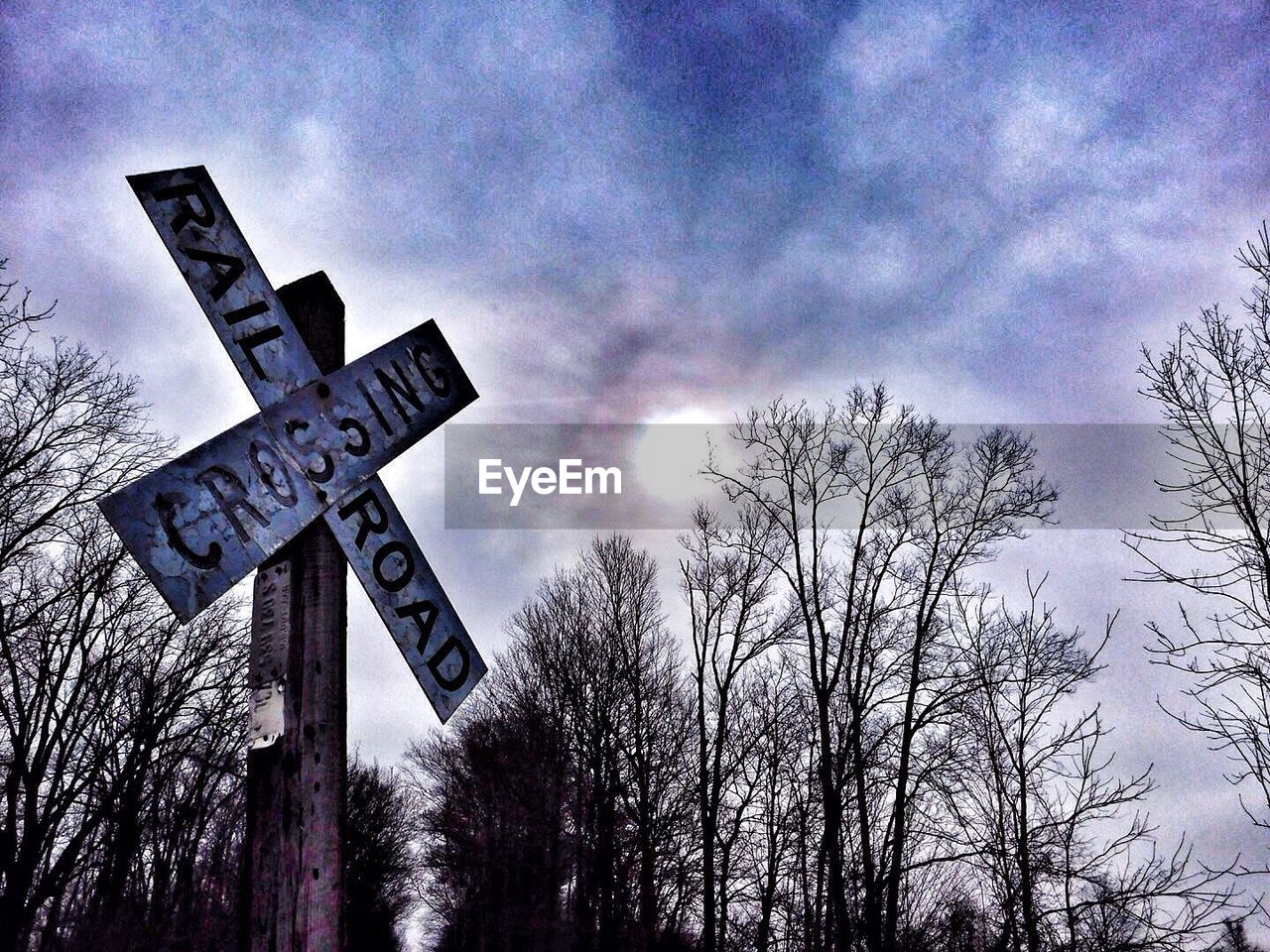guidance, communication, direction, sky, low angle view, bare tree, no people, outdoors, road sign, day, tree, nature, close-up