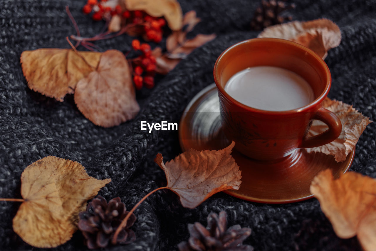 food and drink, cup, drink, leaf, plant part, refreshment, mug, autumn, coffee cup, hot drink, coffee, indoors, food, no people, close-up, coffee - drink, selective focus, freshness, nature, still life, leaves, tea cup, change, crockery