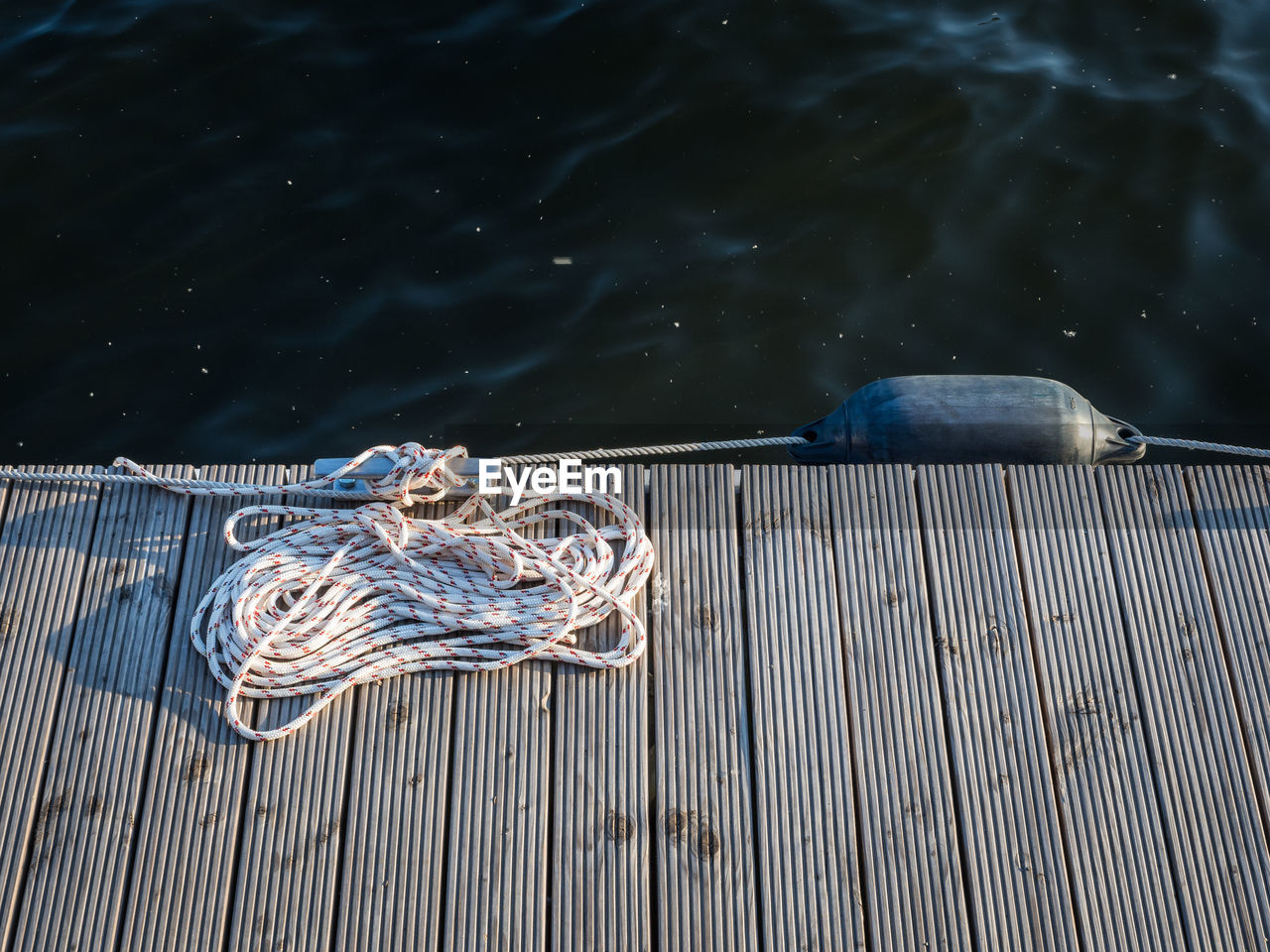 High Angle View Of Fish On Pier