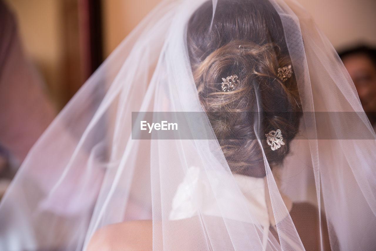 Rear View Of Bride Wearing Veil