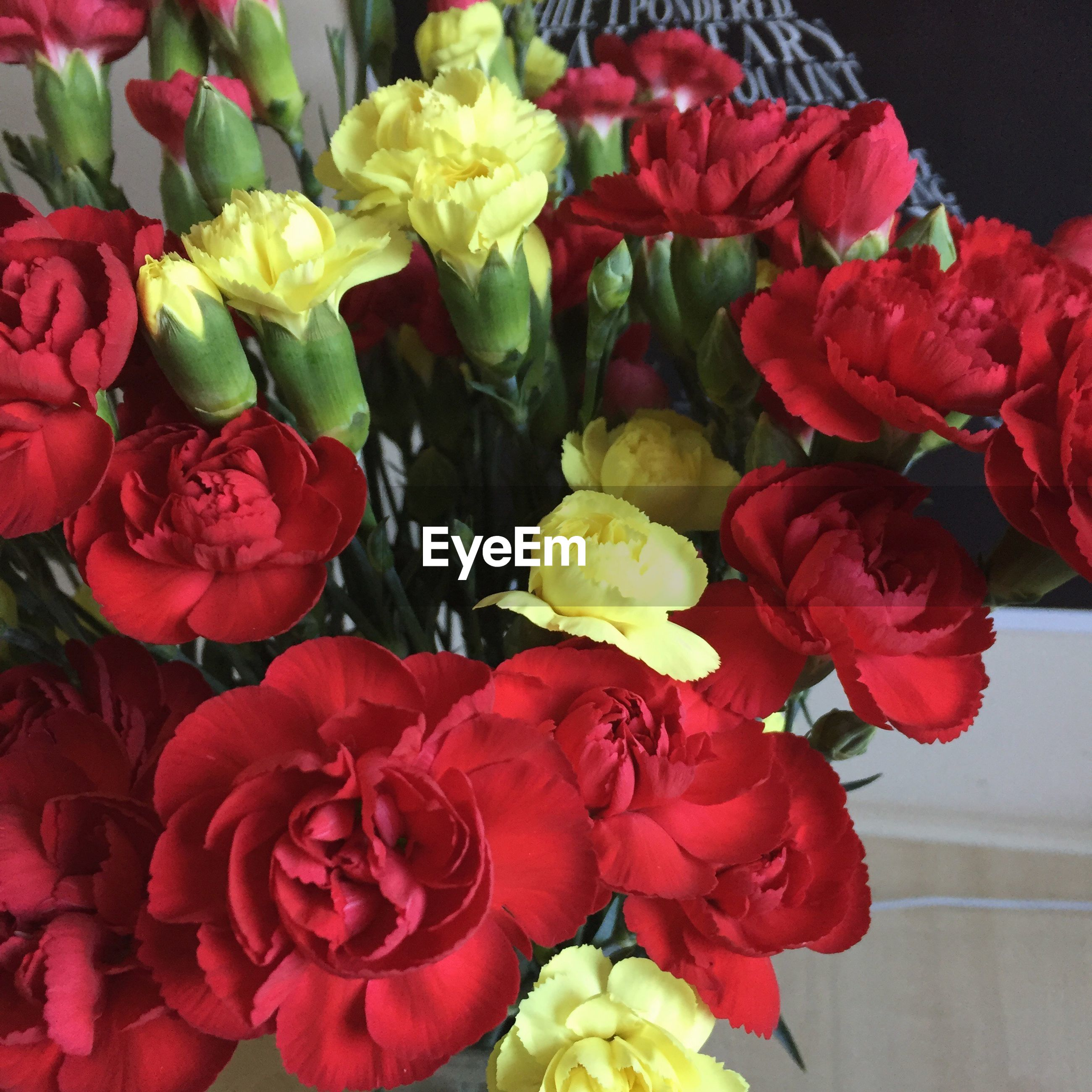 flower, petal, freshness, fragility, rose - flower, beauty in nature, flower head, bouquet, no people, nature, red, close-up, multi colored, day, flower market, indoors