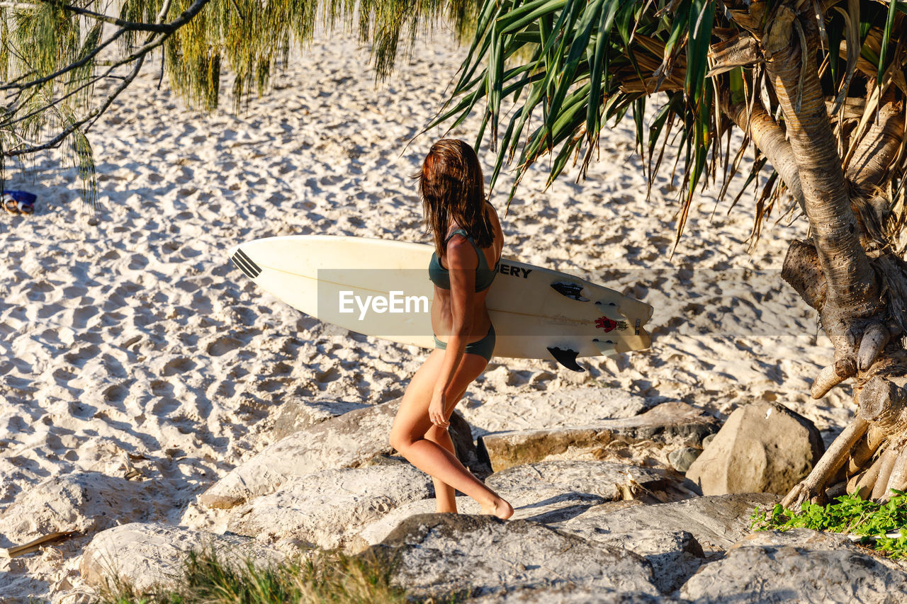 one person, full length, real people, leisure activity, nature, lifestyles, women, tree, day, sunlight, land, young adult, sitting, adult, young women, beach, plant, clothing, beautiful woman, outdoors, hairstyle