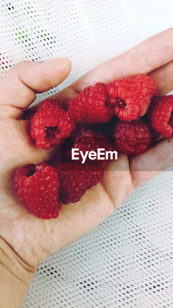fruit, human hand, food and drink, strawberry, food, human body part, healthy eating, freshness, real people, one person, holding, human finger, red, indoors, personal perspective, lifestyles, close-up, high angle view, sweet food, raspberry, men, women, healthy lifestyle, day, people