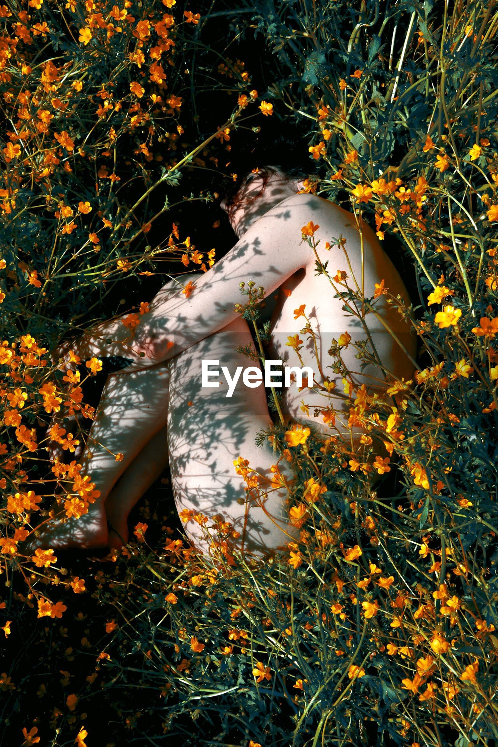 High angle view of naked woman lying down amidst flowers on field