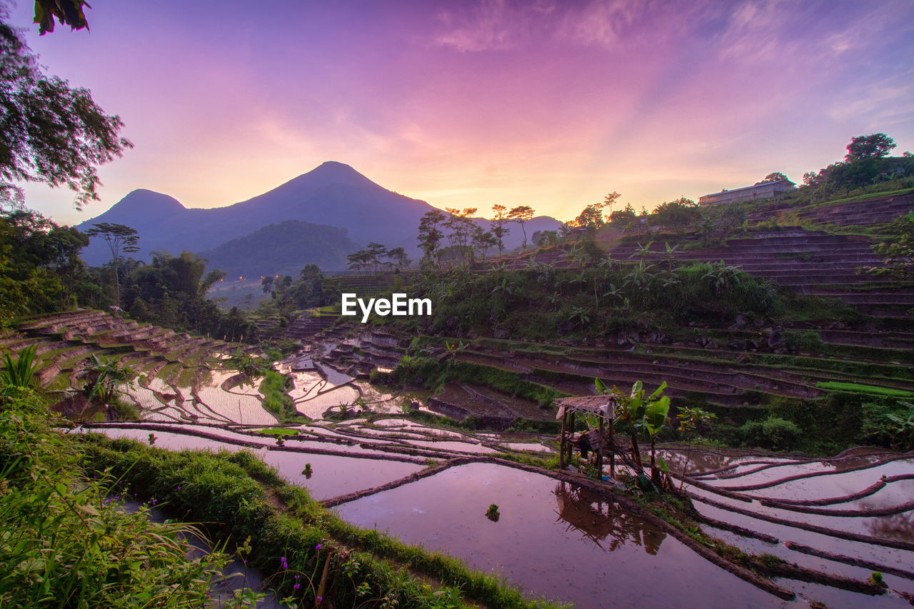 SCENIC VIEW OF AGRICULTURAL LANDSCAPE AGAINST SKY DURING SUNSET