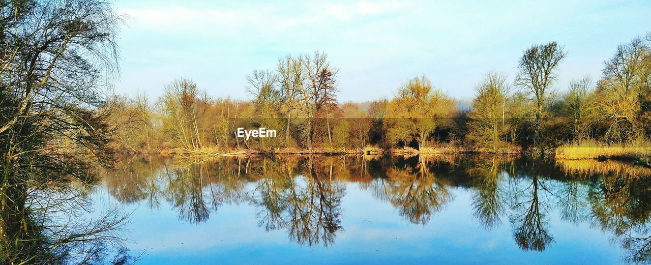 reflection, tree, nature, tranquil scene, tranquility, beauty in nature, sky, scenics, water, lake, outdoors, day, no people