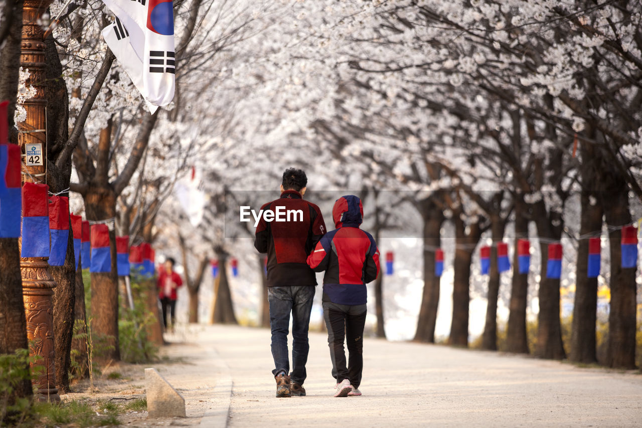 Rear View Of People Walking On Footpath Amidst Cheongsachorongs
