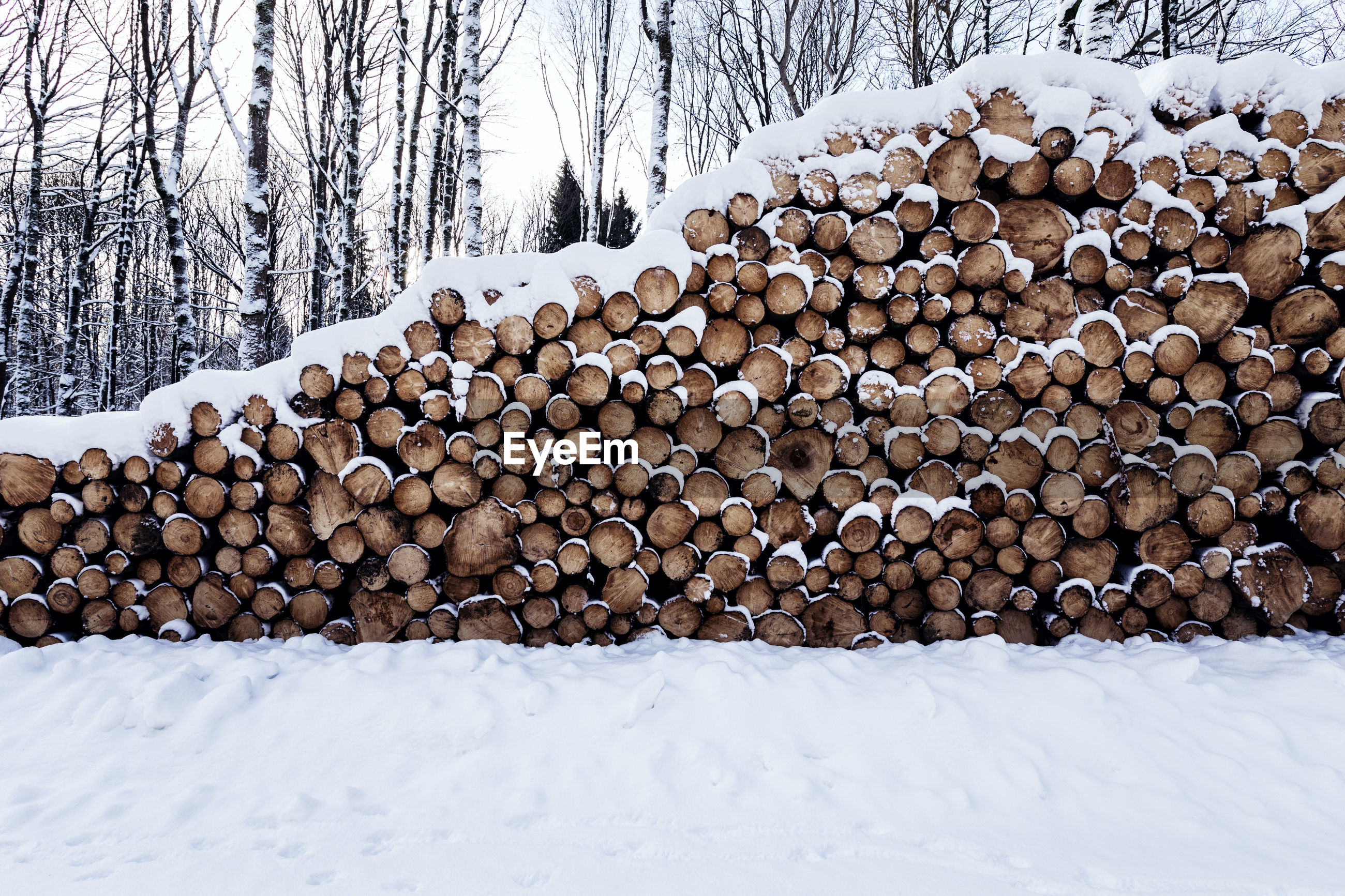 STACK OF FIREWOOD ON SNOW